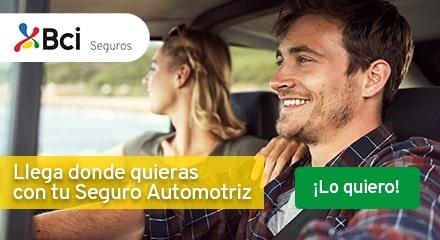 Seguro Automotriz 2019